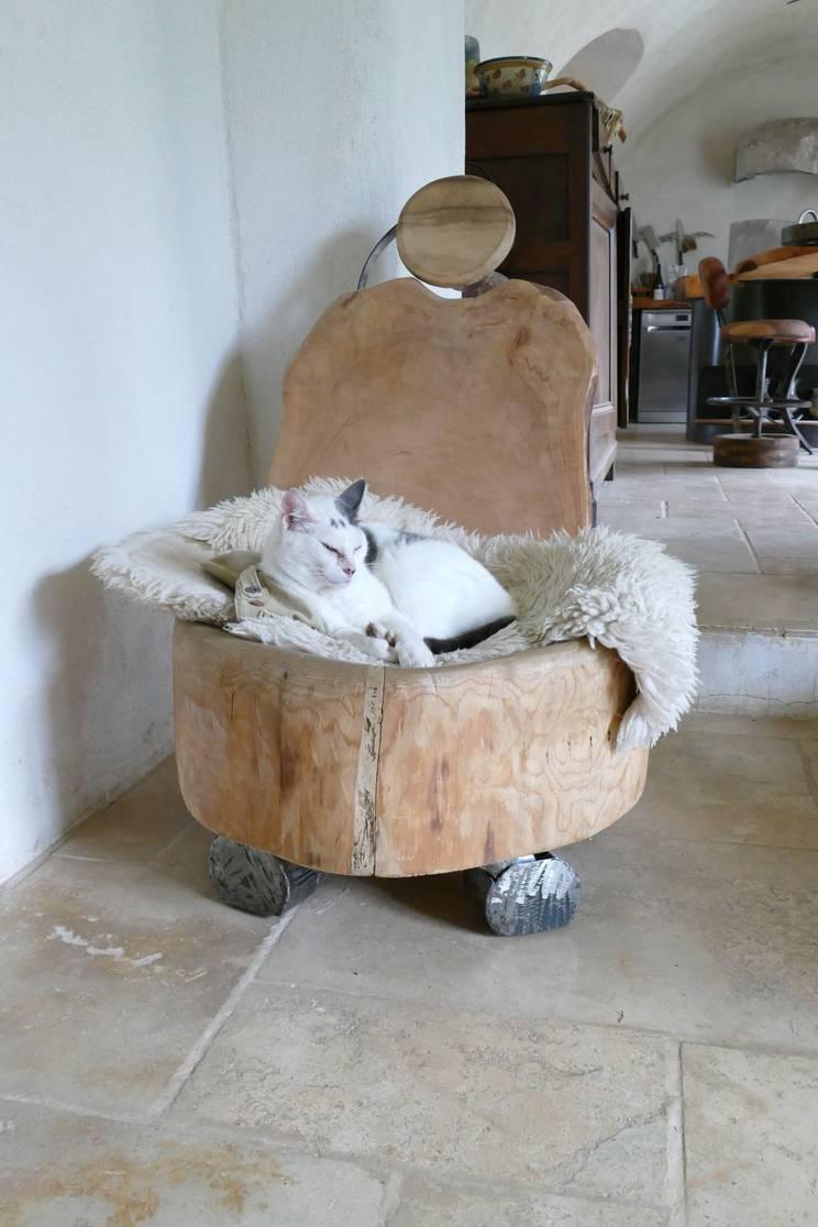 Meuble sculpture de Marie-France Poulat qui plait au chat !
