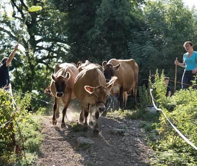 Photo La ferme de Bartabelle